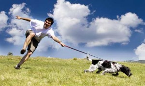 man-being-dragged-by-dog