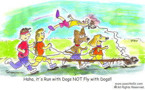 Fly With Dogs